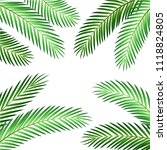 palm leaf vector background | Shutterstock .eps vector #1118824805