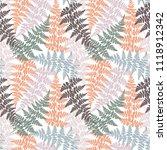 fern frond herbs  tropical... | Shutterstock .eps vector #1118912342