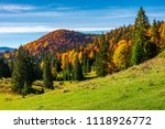 Beautiful Autumnal Landscape O...
