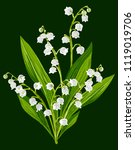 lily of the valley   Shutterstock .eps vector #1119019706