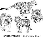 set of vector drawings on the... | Shutterstock .eps vector #1119139112