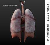 3d illustration respiratory... | Shutterstock . vector #1119170585