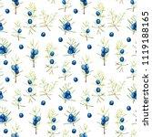 watercolor juniper branches...   Shutterstock . vector #1119188165