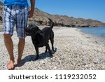 man with his dog on the beach. | Shutterstock . vector #1119232052