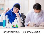 two chemists working in the lab | Shutterstock . vector #1119296555