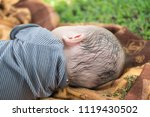 cute little boy sleep. subject... | Shutterstock . vector #1119430502