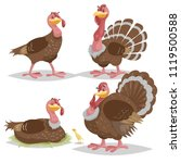 Cute Turkeys Set. Cartoon...