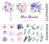 violet and white hydrangea ... | Shutterstock .eps vector #1119543392