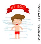 my body poster of the parts of... | Shutterstock .eps vector #1119569228