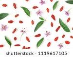 closeup of goji berries  lycium ...   Shutterstock . vector #1119617105