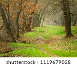 beautiful path in the spring... | Shutterstock . vector #1119679028