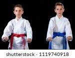 two boys training karate kata... | Shutterstock . vector #1119740918