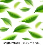 green tea leaves manu and... | Shutterstock .eps vector #1119746738