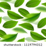 green tea leaves seamless and... | Shutterstock .eps vector #1119794312