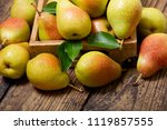 fresh pears with leaves in a... | Shutterstock . vector #1119857555