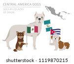 dogs by country of origin.... | Shutterstock .eps vector #1119870215