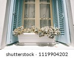 succulents on a blue window | Shutterstock . vector #1119904202