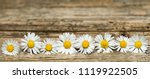 panoramic image of white... | Shutterstock . vector #1119922505
