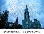 castle around many birds | Shutterstock . vector #1119956948