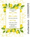 luxury wedding invitation card... | Shutterstock .eps vector #1120003292