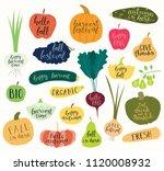 big autumn harvest set with... | Shutterstock .eps vector #1120008932