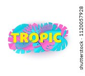 word tropic composition with... | Shutterstock .eps vector #1120057928