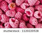 background of frozen... | Shutterstock . vector #1120220528