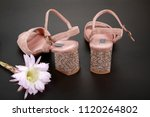 woman shoes with accessories | Shutterstock . vector #1120264802