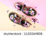 woman shoes with accessories | Shutterstock . vector #1120264808