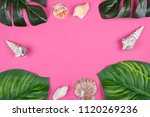 monstera and calathea leaves... | Shutterstock . vector #1120269236