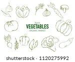farm vegetables vector poster.... | Shutterstock .eps vector #1120275992