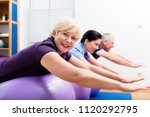 group in physiotherapy using... | Shutterstock . vector #1120292795