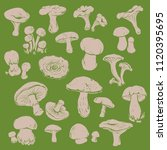 set of vector hand drawn... | Shutterstock .eps vector #1120395695