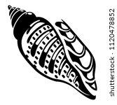 ocean shell icon. simple...   Shutterstock . vector #1120478852