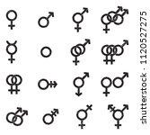 gender icons. black scribble...   Shutterstock .eps vector #1120527275