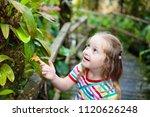 little girl hiking in jungle....   Shutterstock . vector #1120626248