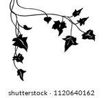 ivy vine silhouette vector ... | Shutterstock .eps vector #1120640162