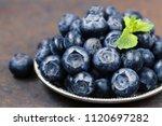 fresh organic blueberries berry ... | Shutterstock . vector #1120697282