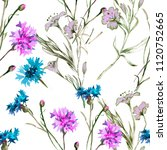 cornflowers and wild flowers... | Shutterstock . vector #1120752665
