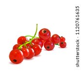 fresh  nutritious and tasty red ... | Shutterstock .eps vector #1120761635