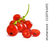 fresh  nutritious and tasty red ... | Shutterstock .eps vector #1120761692