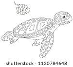 Funny Sea Loggerhead Turtle An...