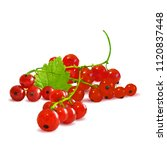 fresh  nutritious and tasty red ... | Shutterstock .eps vector #1120837448