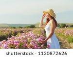 beautiful young woman posing... | Shutterstock . vector #1120872626
