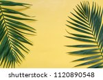 tropical palm leaves border... | Shutterstock . vector #1120890548