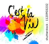 c'est la vie. lettering on...   Shutterstock .eps vector #1120903232