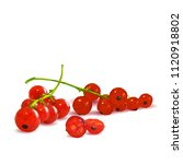 fresh  nutritious and tasty red ... | Shutterstock .eps vector #1120918802