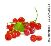 fresh  nutritious and tasty red ... | Shutterstock .eps vector #1120918835
