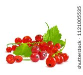 fresh  nutritious and tasty red ... | Shutterstock .eps vector #1121005535