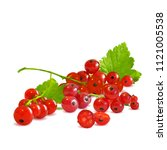 fresh  nutritious and tasty red ... | Shutterstock .eps vector #1121005538